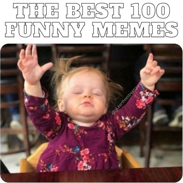 Best 100 Funny Memes